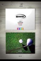 Golf flags flyer by themetamy