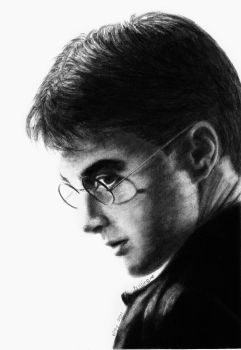 Harry Potter by tintin33
