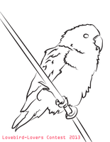Lovebird Coloring Page - Contest 2013 by studio-emi