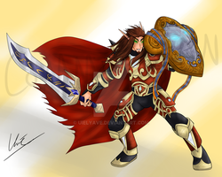Paladin by Uielyave