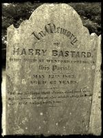 R I P Harry by Estruda