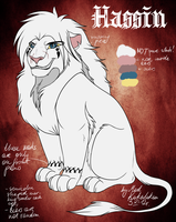 Hassin Character Sheet by MadKakerlaken