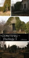 Cemetery Package 3 by almudena-stock