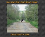 THE LONG ROAD HOME by milissaroland