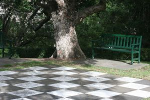 Giant Chessboard Revisited.3 by Mind-Matter