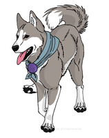 Canine Warrior Gi by grunge-is-dead