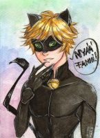 Chat Noir by Ayayou