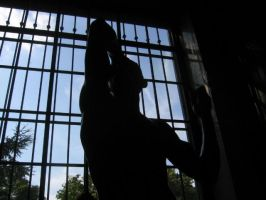 rodin silhouette by miracledrug
