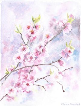Peach blossom by Mospineq