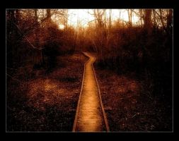 Our Path by Forestina-Fotos
