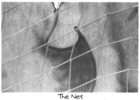 The_Net by MabtheEvil