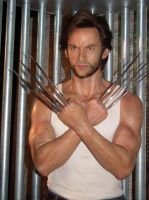 He's Wolverine by BrendanR85