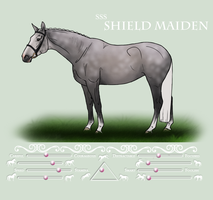 SSS Shield Maiden by BrindleTail
