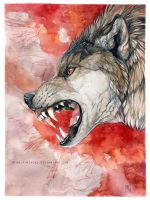 Crimson growl by wolf-minori