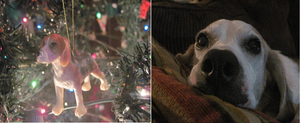 My Christmas Ornaments: Lily the Beagle by DreamsCanComeTrue67