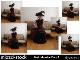 Dark Mansion Pack 7 by mizzd-stock