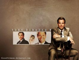 Tony DiNozzo Season 8 by KissofCrimson