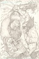 Wolverine vs Sabretooth by c-crain