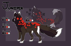Juniper by Notarized