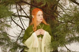 Elven Princess 02 by KittyTheCat-Stock