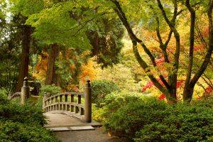 Moon Bridge in the Fall by SonjaPhotography