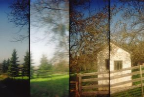 Lomography Supersampler 3 by spiti84