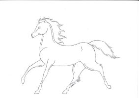 Horse Sketch by Aquamarin-Graphics