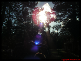 Lens Flare by TaoPhotography