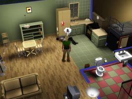SIMS 3: 2 Fires + 1 Missed Work Day + NO Sleep=... by Aubergine-Jeri