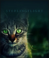 sterlingflight - table by xxtheSilent