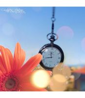 Flower and clock by FrancescaDelfino