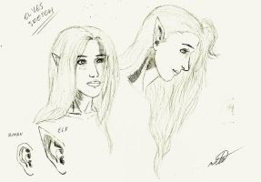Elves sketch by stormthor