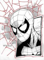 Free Comic book day Spider-man by aethibert