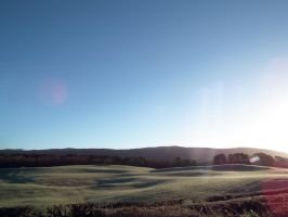 early frost by harrietbaxter