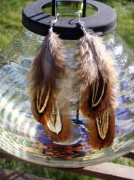 Pheasant Feather Earrings by kjtgp1
