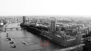 Westminster Palace by Quincula