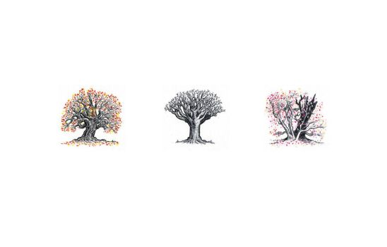 Trio of trees by AndyIomoon
