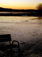 bench in water by svenja71