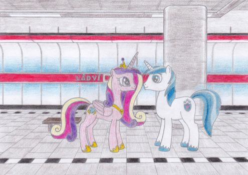 Cadance and Shining Armor at Ladvi by Tails-CZ