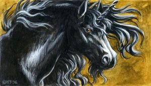 Black unicorn magnet by Hbruton
