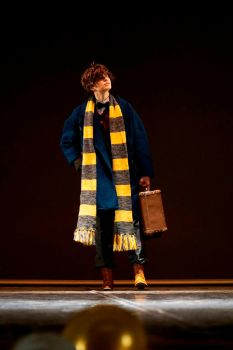 Newt Scamander on stage. by Verrett