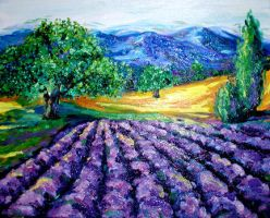 provence lavender by lindaleigh