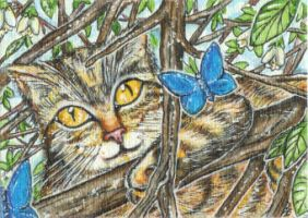 Fanciful (ACEO) by Keyshe54