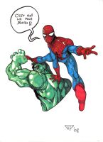 Spidey and Hulk by guillomcool