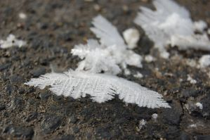 Frost formation by timothymh