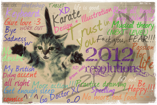 2012 Resolutions by projecte-insomni
