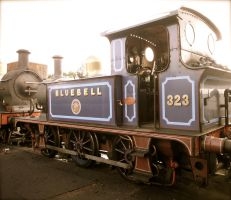 Bluebell by SteamRailwayCompany