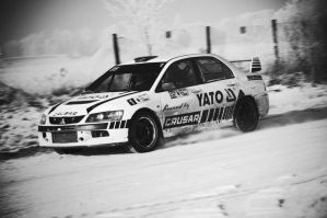 Evo in Black and White by redsunph