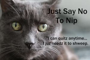 Just Say No To Nip by AlpoArts