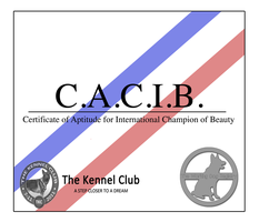WDR CACIB Certificate by BV-Academy